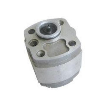 R918C02383 AZPF-22-022LRR20MB Hydraulische Zahnradpumpe