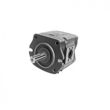 CBW-F310-CFP Hydraulische Zahnradpumpe