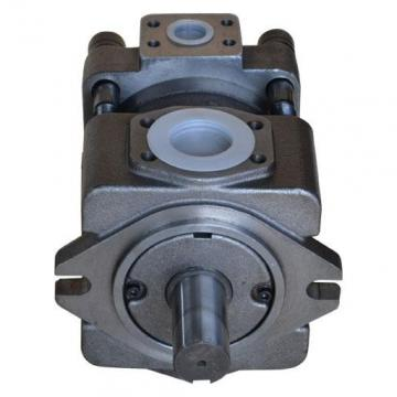 QT2323-6.3-6.3MN-S1162-A Hydraulische Zahnradpumpe