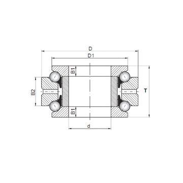 234434 MSP CX Druckkugellager