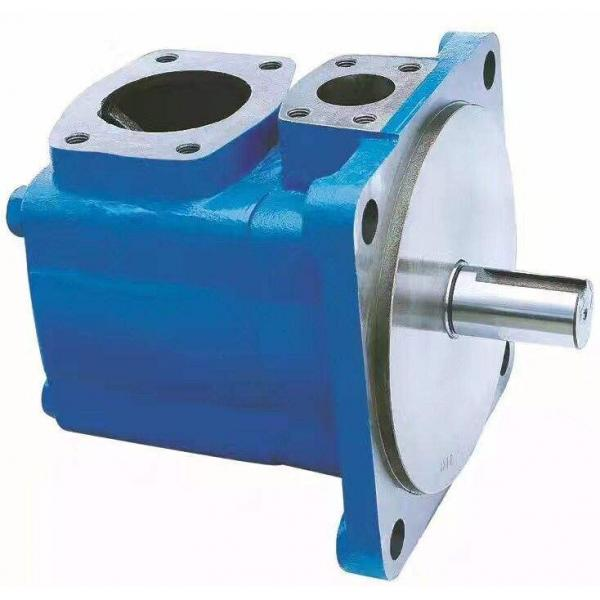 PV29-2R1B-C02 Hydraulische Kolbenpumpe / Motor