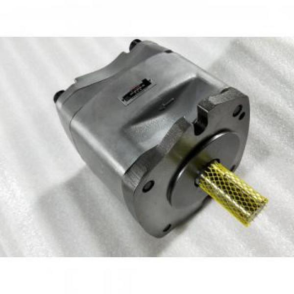 PV29-2R1D-J02 Hydraulische Kolbenpumpe / Motor