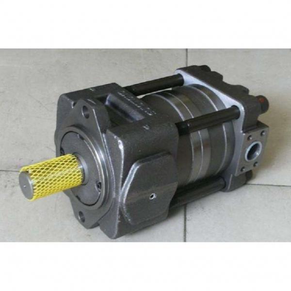 IPH-5B-50-11 Hydraulische Zahnradpumpe