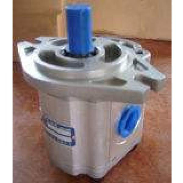 QT63-80-A Hydraulische Zahnradpumpe